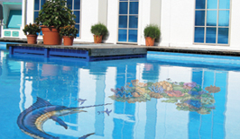 Swimming Pool Aqua Decals Best Buy Pool Supply