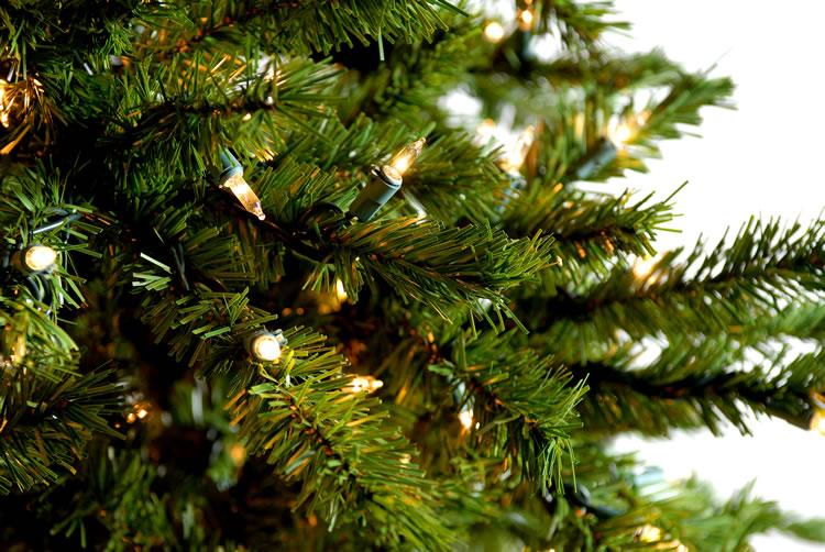 Fuses For Christmas Lights