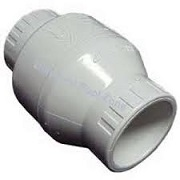 2In  Pvc Swing Check Valve