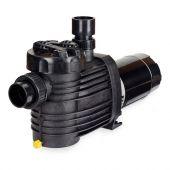 Speck S90 1 HP Dual Speed Inground Pool Pump (S90-II)